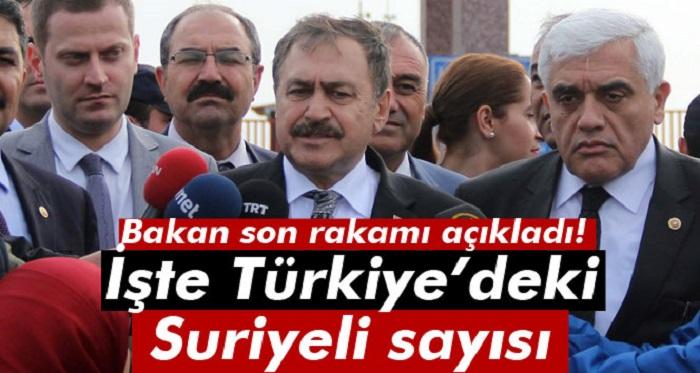 İşte Türkiye'de Suriyeli Sayısı