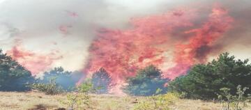 Sungurlu İtfaiyesi 272 Yangına Müdahale Etti