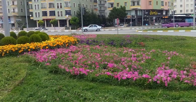 Belediye Kenti Çiçeklerle Donatıyor