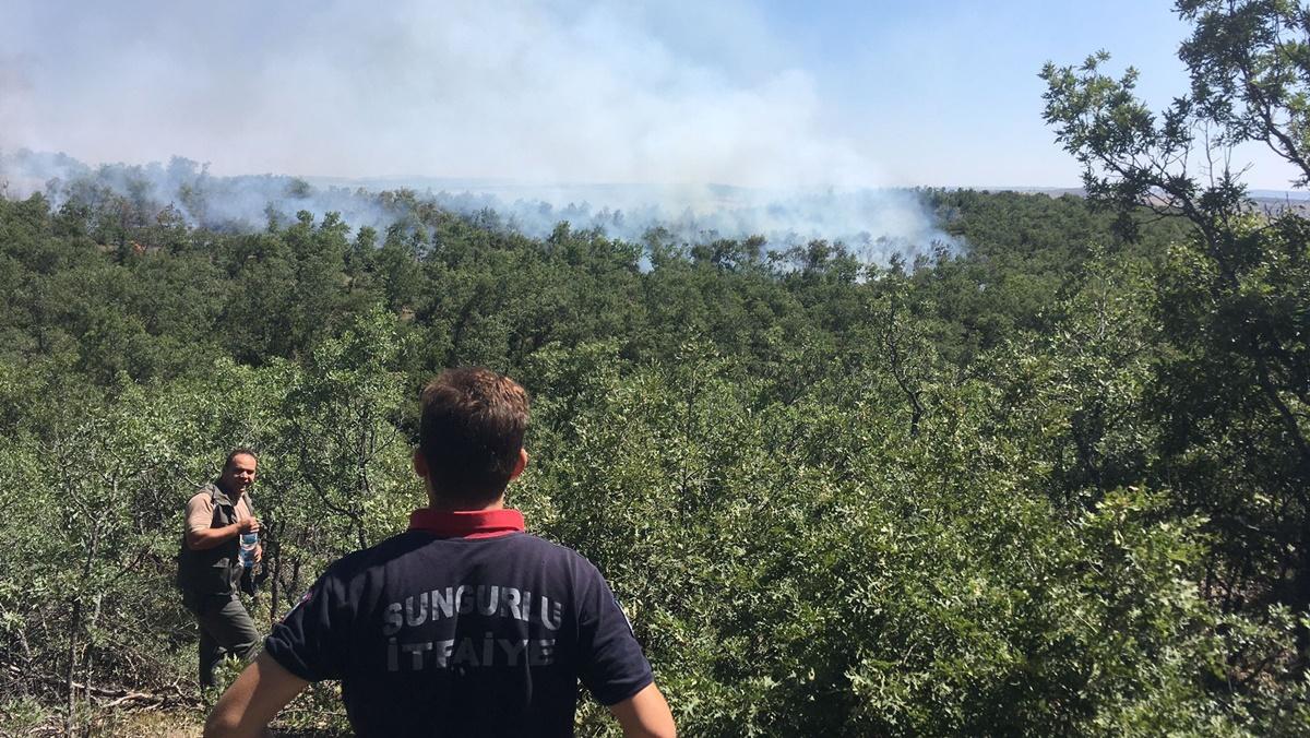 Çorum'da Şüpheli Orman Yangını